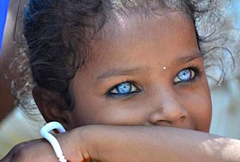 All blue eyed people are related
